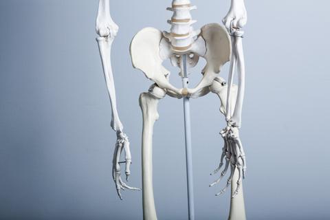 体が歪んでしまう原因は?骨盤矯正で健康で美しい体を手に入れる!