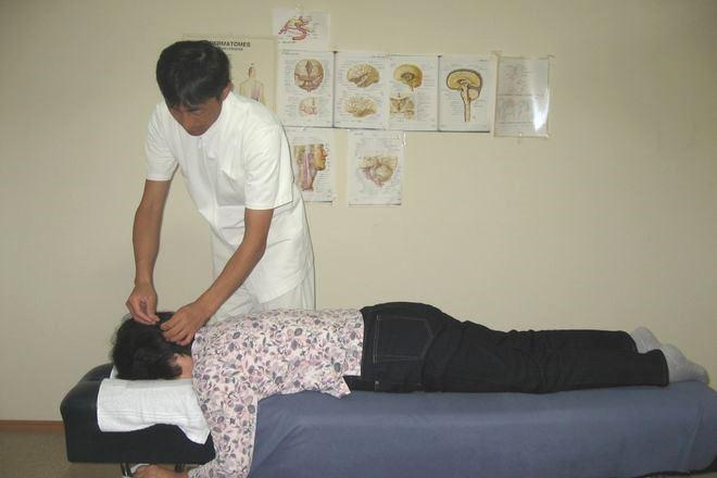 半身症候鍼灸法
