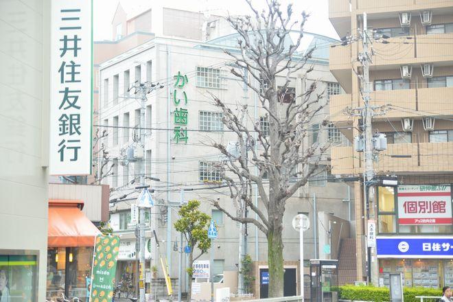 武庫之荘駅北口すぐ!