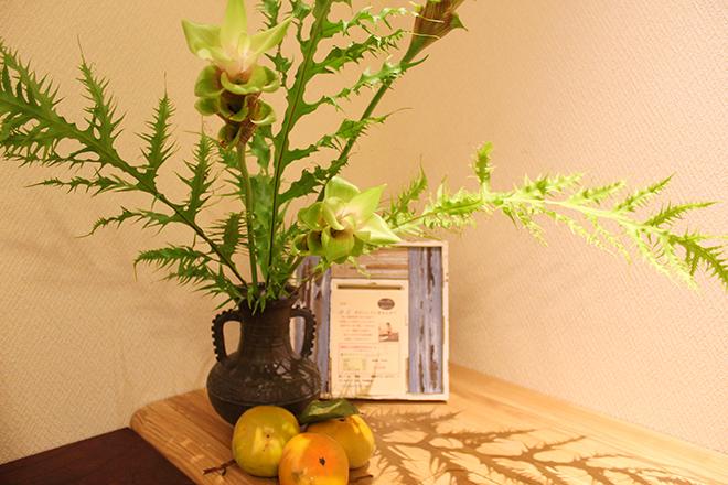 季節を感じる植物で空間作りを大事にしています