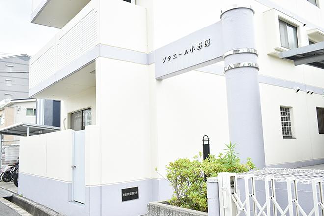 白い外観の建物1階が当サロンになります