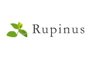 Rupinus