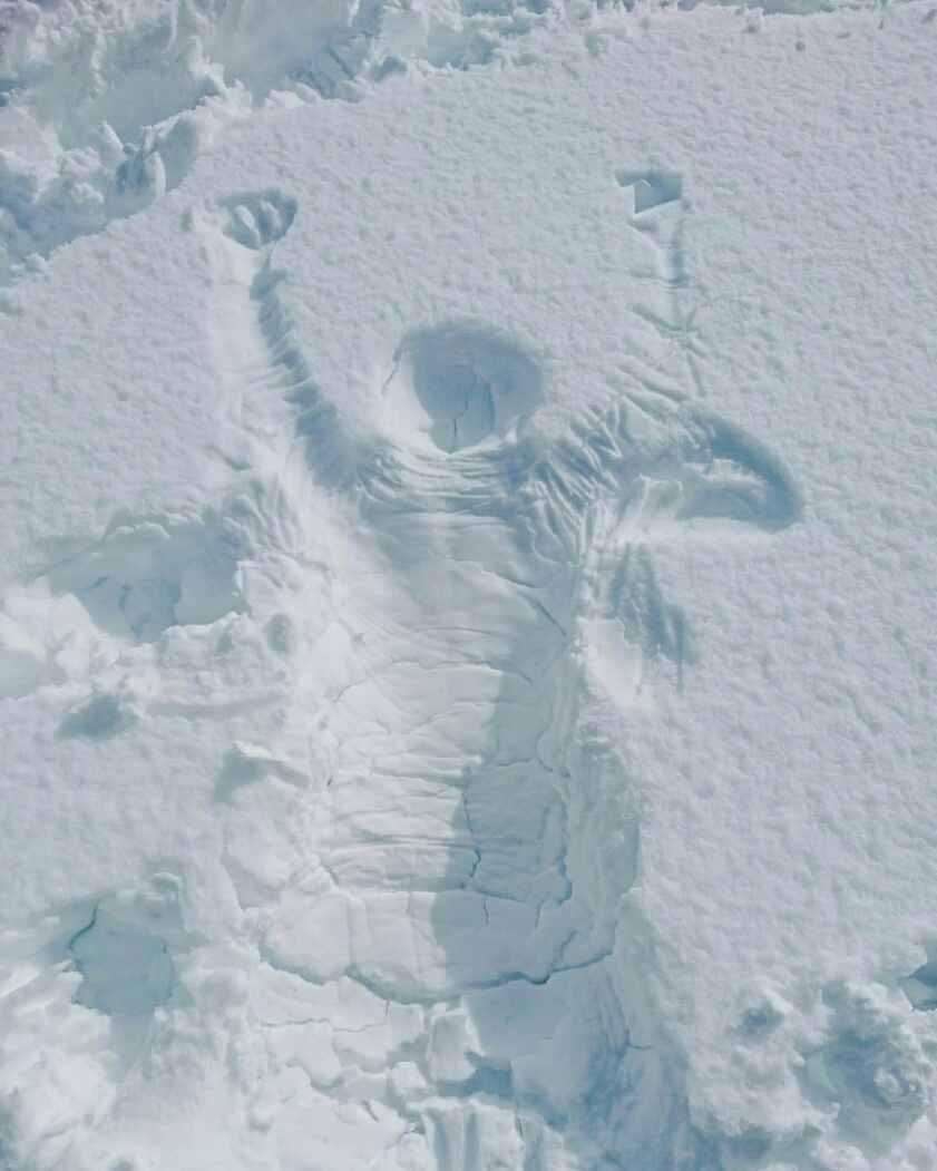 雪よかしたるどーーー