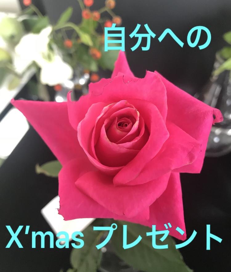 ご自分へのクリスマスプレゼント