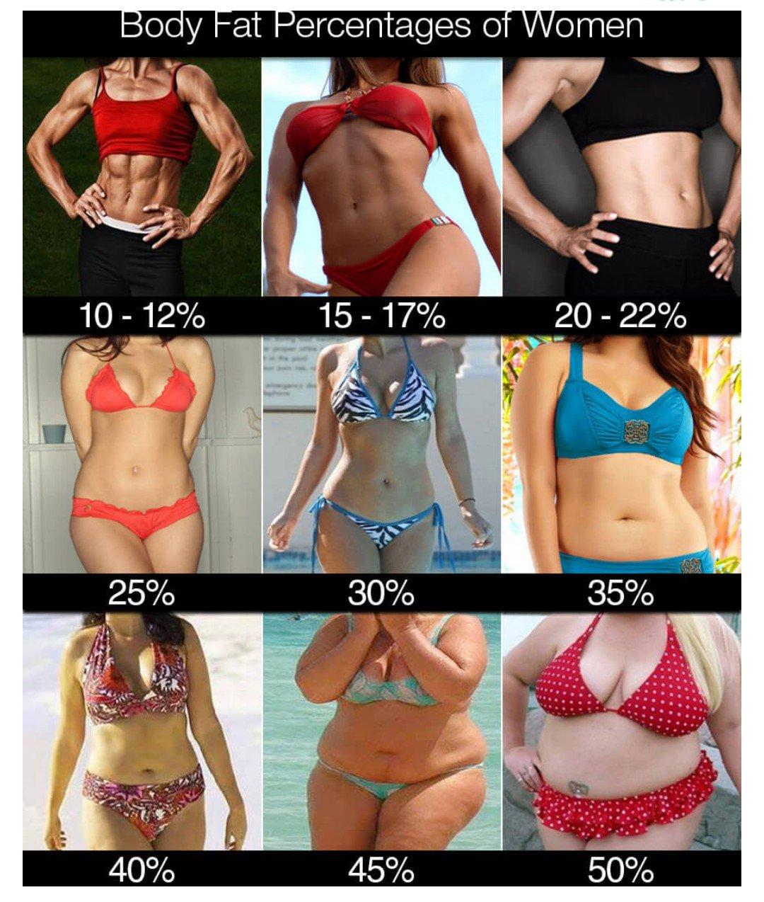 30 体 女性 脂肪 パーセント