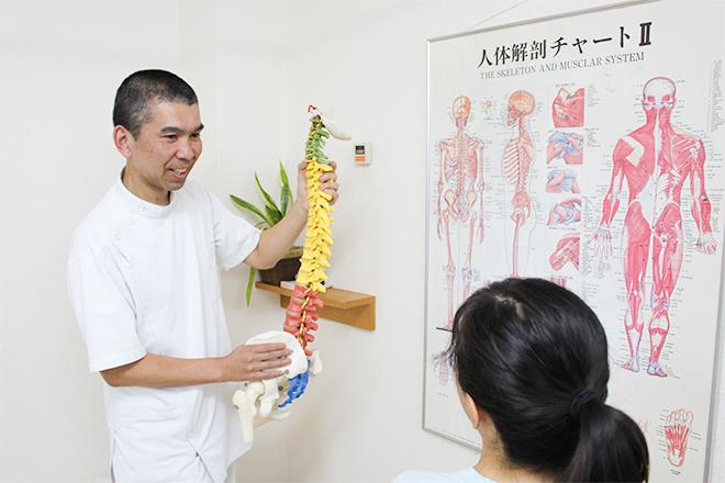永福町 カイロプラクティック 不調の原因をわかりやすく解説します