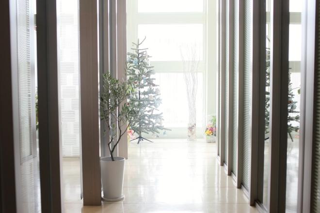 Maris Regina 清潔な空間