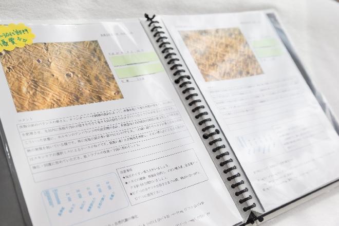 アンレミューラボ神戸三宮店(UnLemieux Labo) 肌質分析書