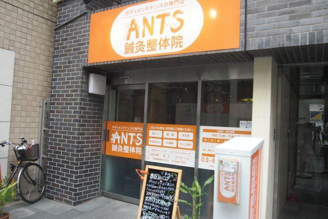 メニューが充実した整体院 | ANTS(アンツ)鍼灸整体院