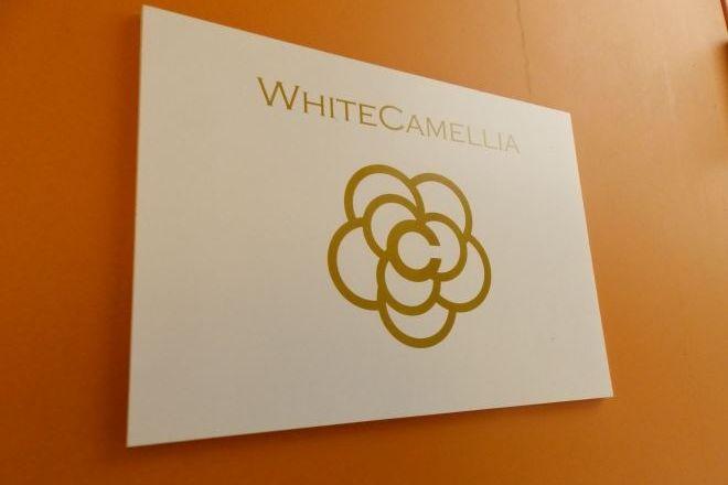 WHITE CAMELLIA 嬉しい!       駅近エステサロン!