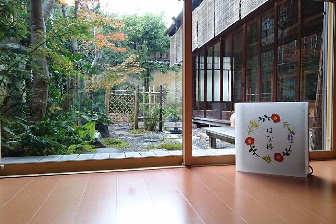 はな椿(ハナツバキ) 美しいお庭で心のリラックス