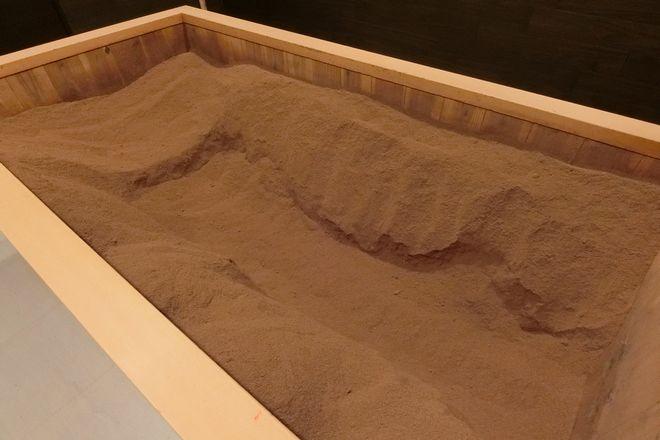 米ぬか酵素 大阪では少ない米ぬか酵素がここに!