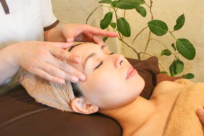 Healing Salon mite 植物療法から生まれた国産化粧品を使用