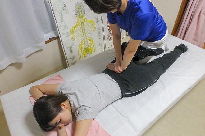 ミニー(Chiropractic Therapy Minnie) お客様に合わせたオーダーメイドの施術です