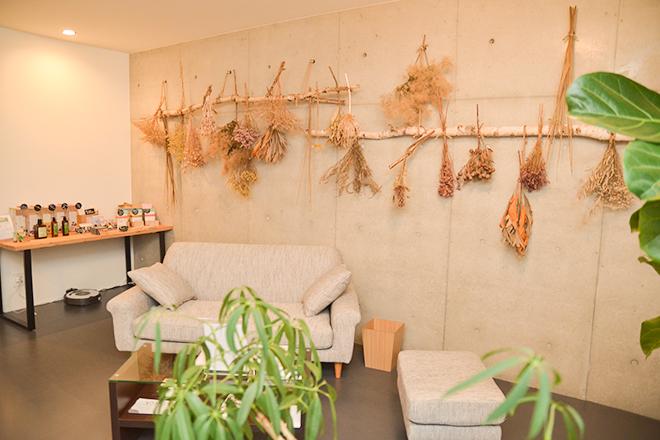 KINECA 木根花 一体感のあるリラクゼーションスペース