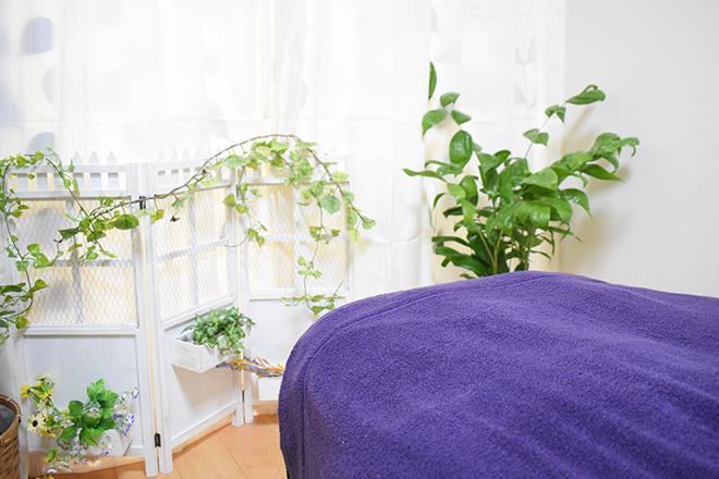 ミオン(美織) 観葉植物を飾って、心からリラックスできる空間を