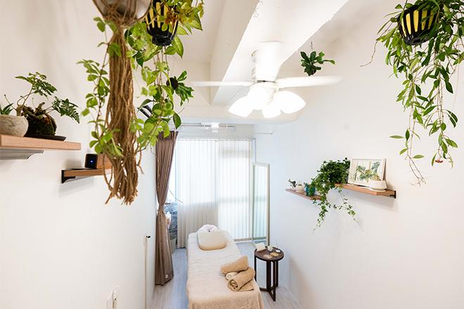 開放的な空間に、植物をたくさん飾っています