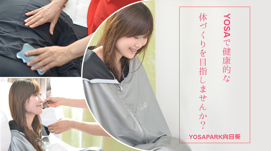 ヒマワリ(YOSA PARK 向日葵)のメイン画像