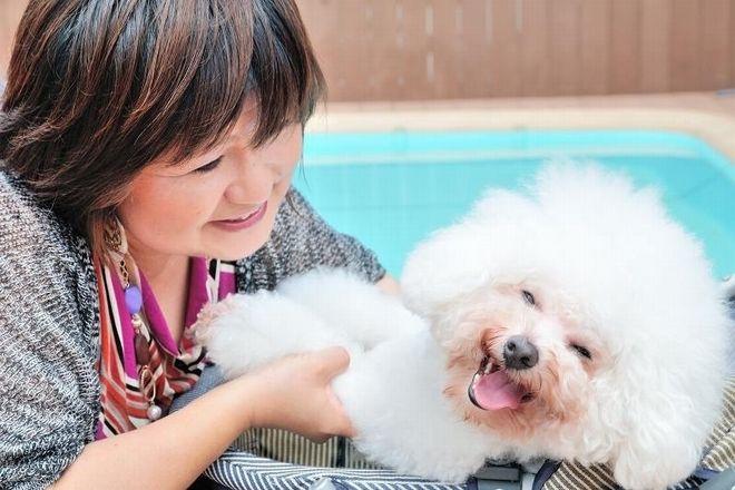 横浜鶴見耳つぼサロン アトリエMの画像1