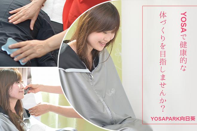 YOSA PARK 向日葵  | ヨサ パーク ヒマワリ  のイメージ