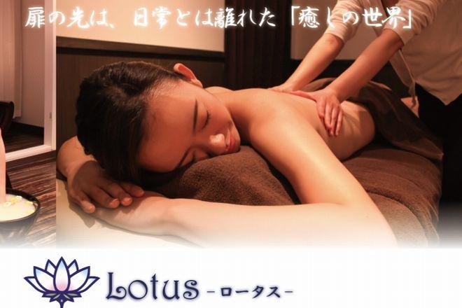Lotus    ロータス  のイメージ