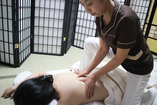 坂本嘉志子 サイコセラピス美容研究所のメイン画像