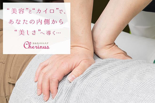 Cherinus  | シェリナス  のイメージ
