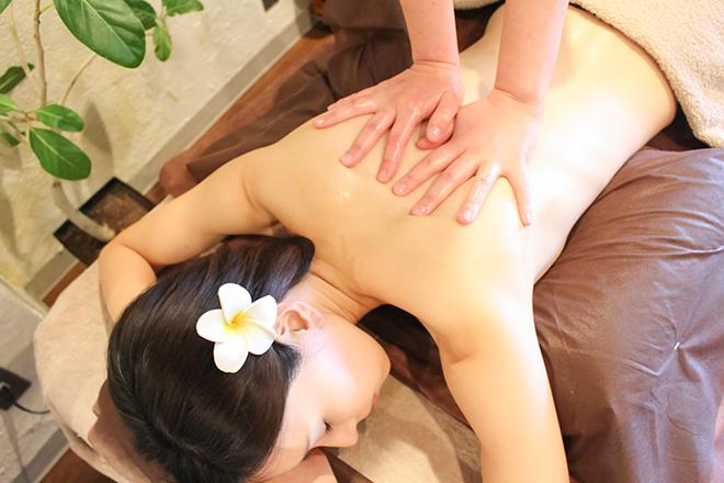 Healing Salon mite