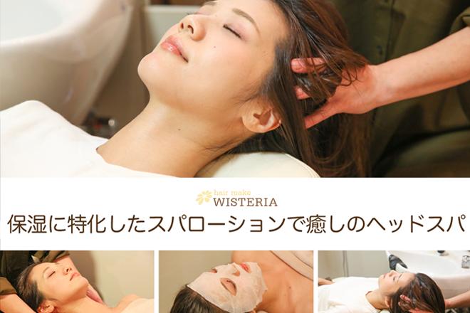 WISTERIA  | ウィステリア  のイメージ