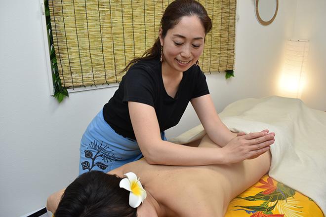 Hawaiian Relaxation ロミロミ niu  | ハワイアン リラクゼーション ロミロミ ニウ  のイメージ