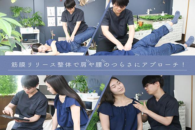 腰痛専門整体院 葵花  | ヨウツウセンモンセイタイイン キッカ  のイメージ