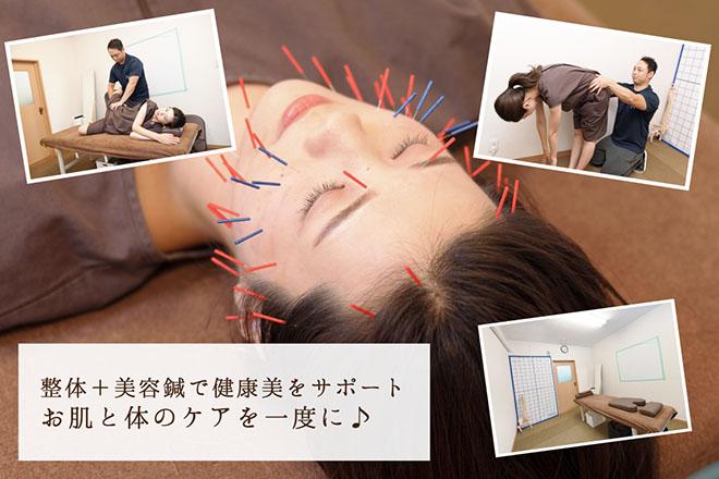 鍼灸整体院 本田    シンキュウセイタイイン ホンダ  のイメージ